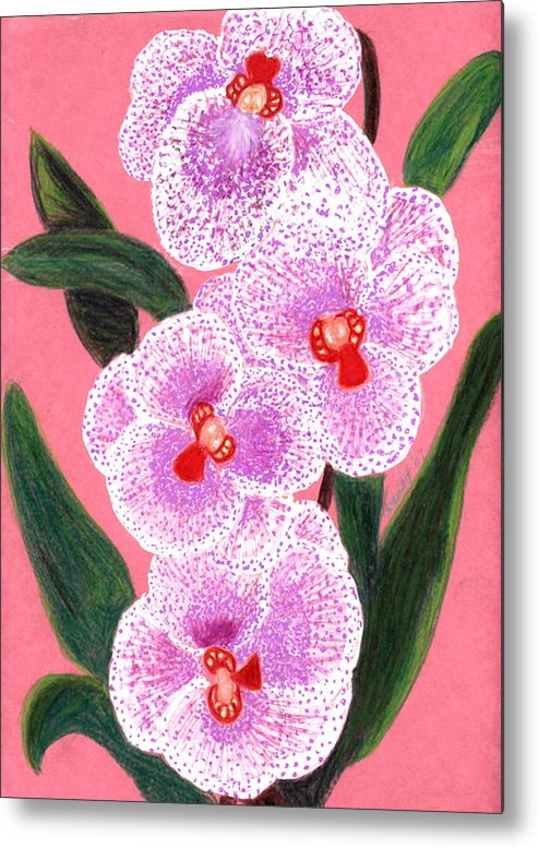 Floral Pink Orchid Metal Print featuring the drawing Spotted Orchid Against A Pink Wall by Carliss Mora