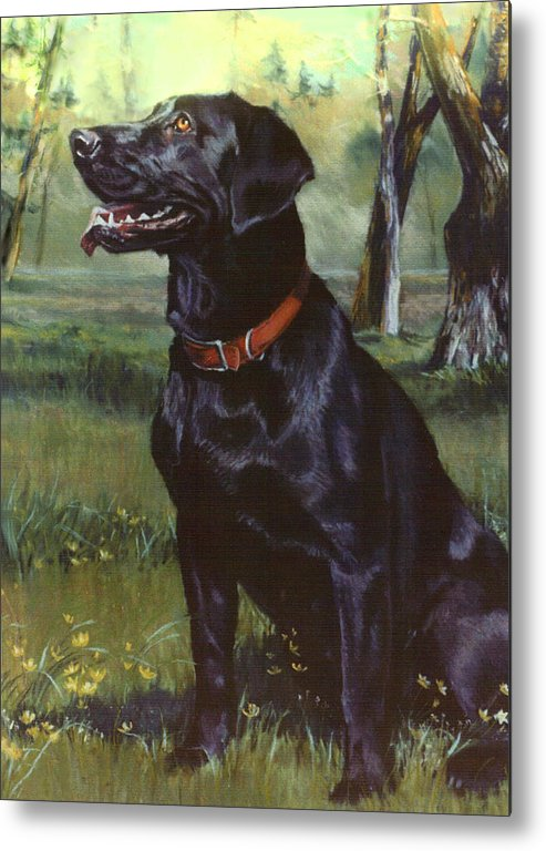 Dog Metal Print featuring the painting Labrador Retriever by Jean Hildebrant
