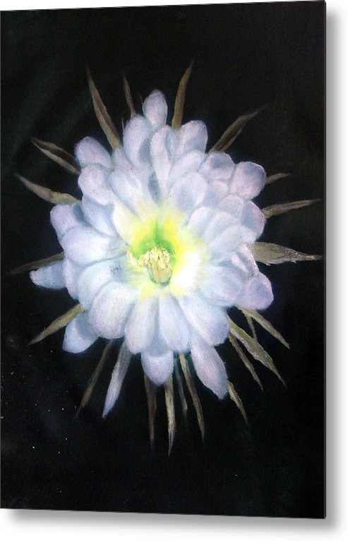 Night Metal Print featuring the painting Night Bloomig Cerus by Darlene Green