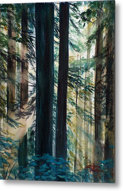 Redwood Metal Print featuring the painting Redwood Light by Sylvia Stone