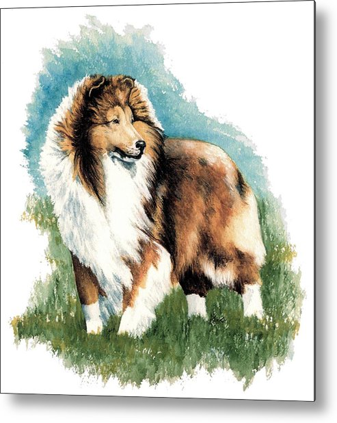 Shetland Sheepdog Metal Print featuring the painting Sheltie Watch by Kathleen Sepulveda