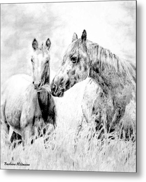 Horses Metal Print featuring the drawing Grazing by Barbara Widmann
