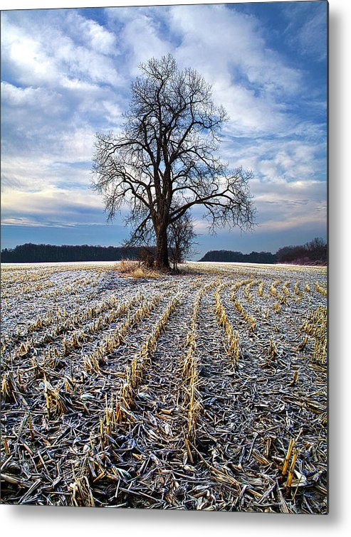 Horizons Metal Print featuring the photograph Waiting For Spring by Phil Koch