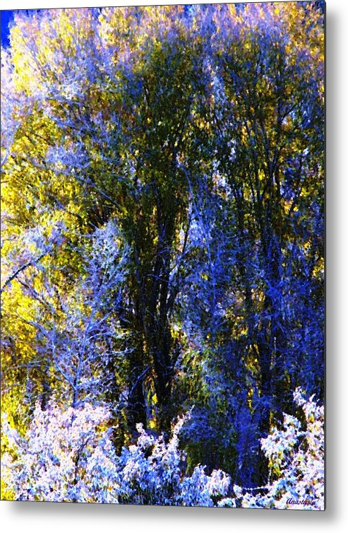 A Dazzling Morning When The Snow Was Resembling A Lavender Lace Or Filigree On The Trees! Metal Print featuring the photograph Bosque Glow And Chantilly Snow by Anastasia Savage Ealy