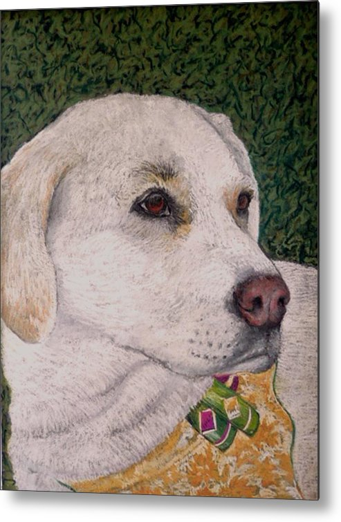 Dog Metal Print featuring the painting Sara by David Horning
