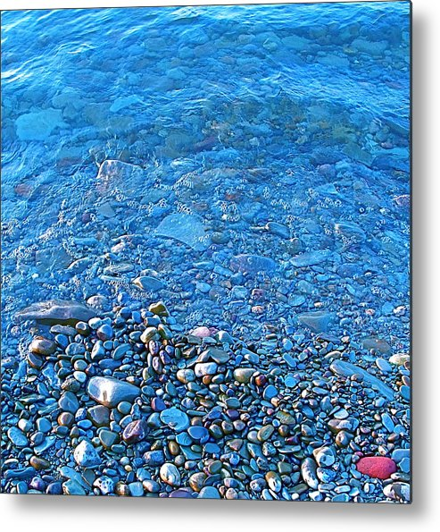 Metal Print featuring the photograph Stand Out by Jennifer Addington