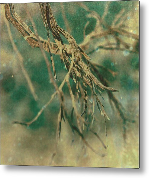 Tree Metal Print featuring the photograph Organic by Mark Ross