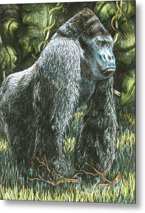 Fuqua - Artwork Metal Print featuring the drawing Silverback-king Of The Mountain Mist by Beverly Fuqua