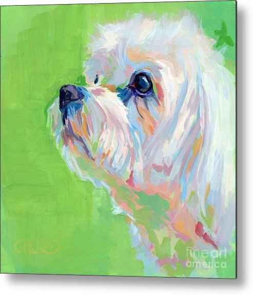 Maltese Metal Print featuring the painting Parker by Kimberly Santini