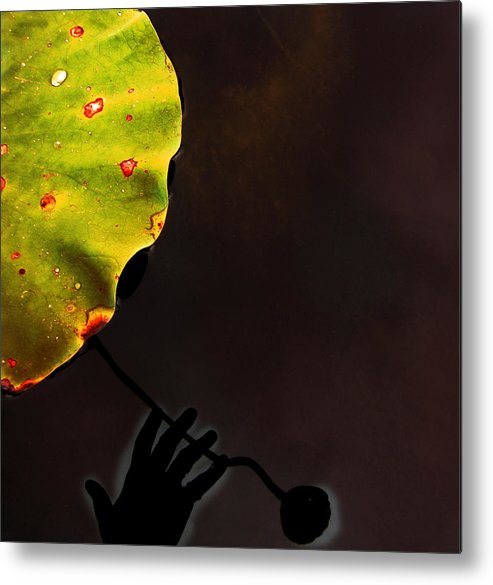 Hand Shadow Metal Print featuring the photograph Vibes by Joanne Baldaia