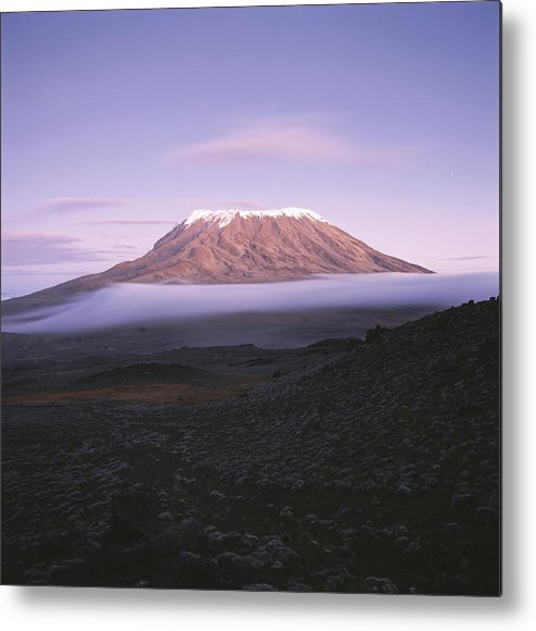 Africa Metal Print featuring the photograph A View Of Snow-capped Mount Kilimanjaro by David Pluth