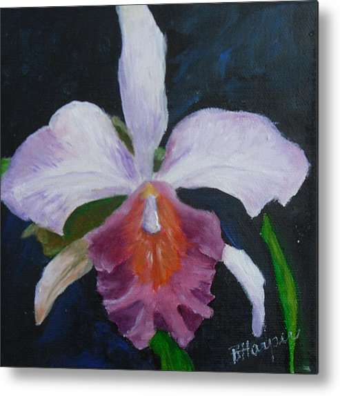 Flower Metal Print featuring the painting Hartford Orchid by Barbara Harper