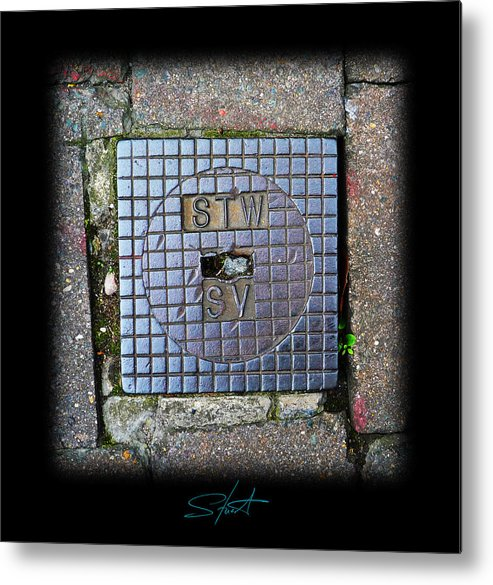 Cast Iron Metal Print featuring the photograph World View by Charles Stuart
