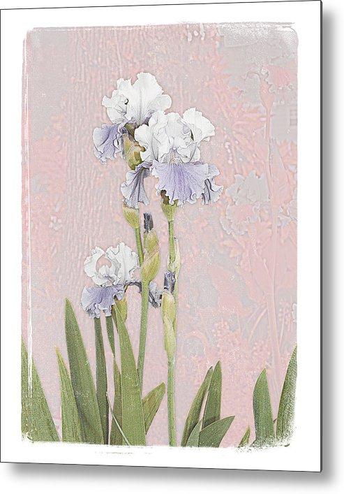 Flowers Garden Beautiful Old Iris Metal Print featuring the photograph Iris 2 by Inesa Kayuta