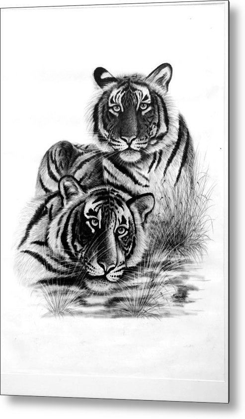 Painting Metal Print featuring the painting Two Tigers by Navratan