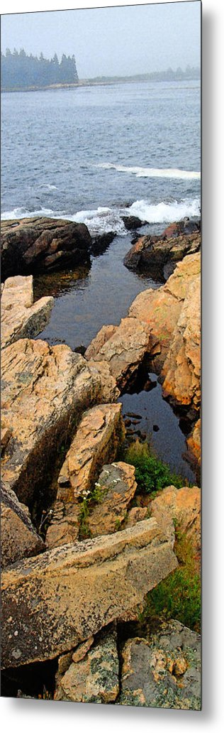 Landscape Metal Print featuring the photograph Scoodic Tidepool by Peter Muzyka
