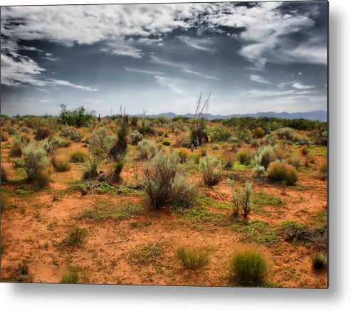 Desert Metal Print featuring the photograph Desert Of New Mexico by Thomas MacPherson Jr