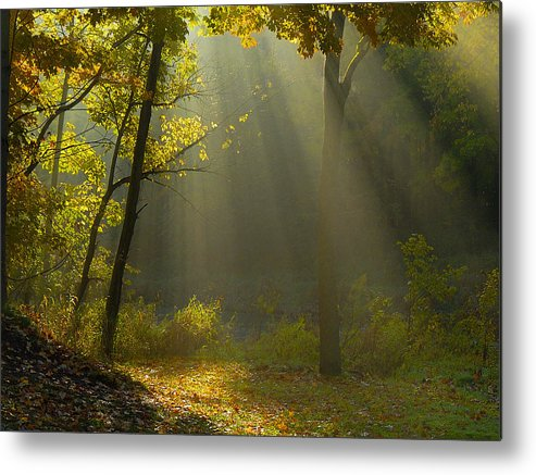 Sun Rays Metal Print featuring the photograph Mystic Morning by Neil Doren