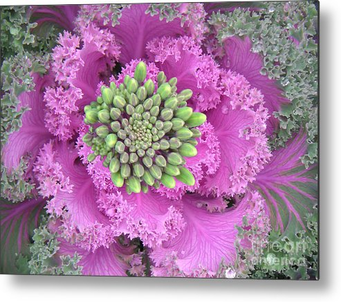 Nature Metal Print featuring the photograph A Study In The Shades Of Spring Three by Lucyna A M Green