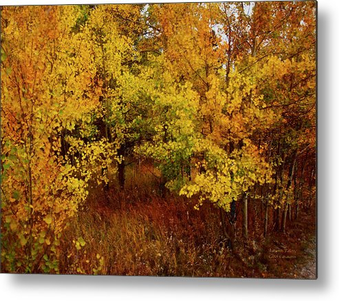 Autumn Metal Print featuring the mixed media Autumn Palette by Carol Cavalaris