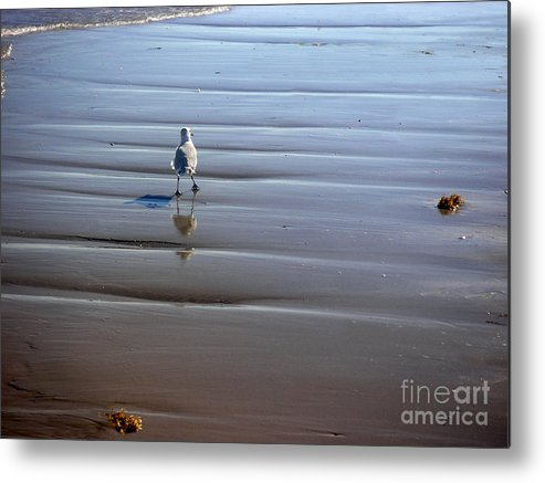 Nature Metal Print featuring the photograph Being One With The Gulf - Escaping by Lucyna A M Green