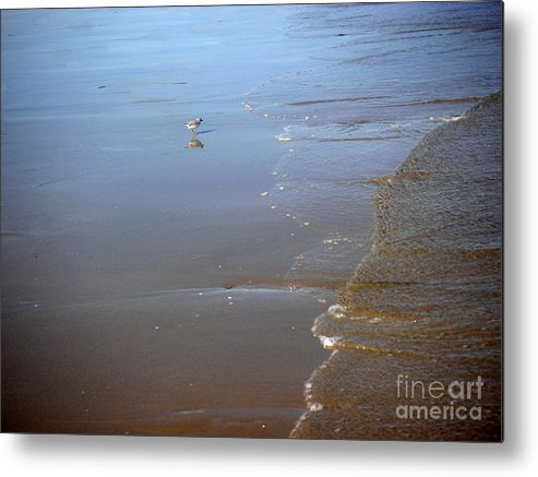Nature Metal Print featuring the photograph Being One With The Gulf - Still by Lucyna A M Green
