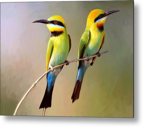 Birds Metal Print featuring the digital art Birds On A Branch by Snake Jagger