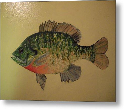 Bluegill Fish Metal Print featuring the painting Bluegill by Robert Cunningham