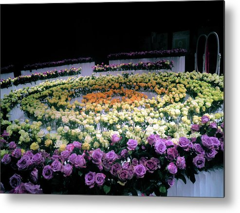 Bold Blossom Framed Prints Metal Print featuring the photograph Circle Of Dreams by Karen Zima
