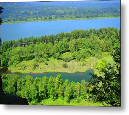 Columbia Metal Print featuring the photograph Columbia River Gorge View by Lisa Rose Musselwhite