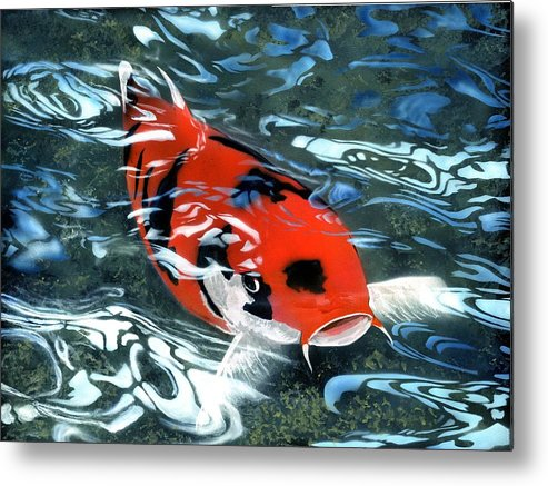 Coy Koi Metal Print featuring the painting Coy Koi by Charles Parks