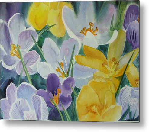Spring Flowers Metal Print featuring the painting Crocus Circus by Dianna Willman