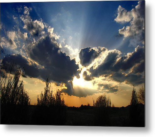 Landscape Metal Print featuring the photograph Evening Sky by Steve Karol