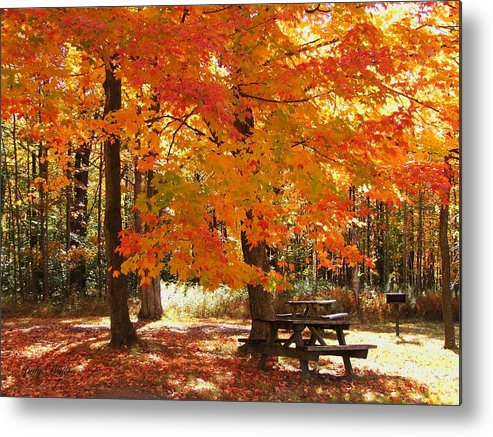 Fall Metal Print featuring the photograph Fall At The Park by Judy Waller
