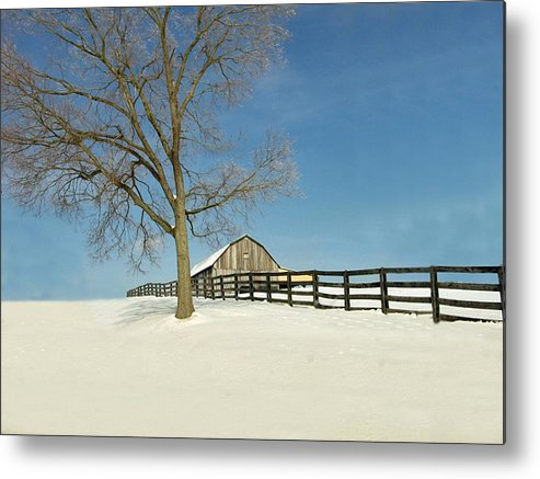 Weather Metal Print featuring the photograph Fence Line by Martie DAndrea