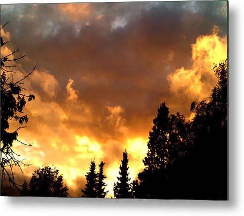 Sunset Metal Print featuring the photograph Fire In The Sky by Michael Canning