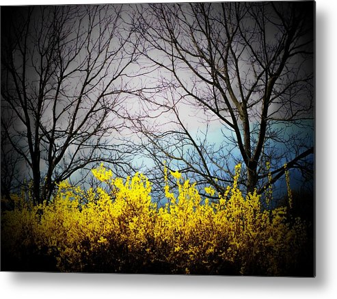 Virginia Metal Print featuring the photograph Forsythia By The Mountains by Joyce Kimble Smith