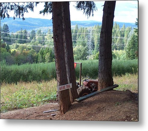 Landscape Metal Print featuring the photograph Harvest Time At Apple Hill by Dawn Marie Black