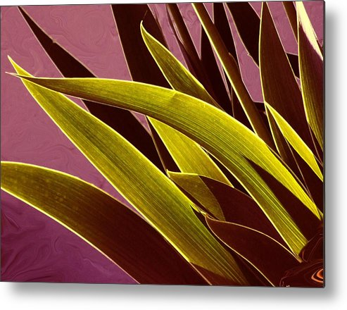 Leaves Metal Print featuring the photograph Iris Art by Jim Darnall