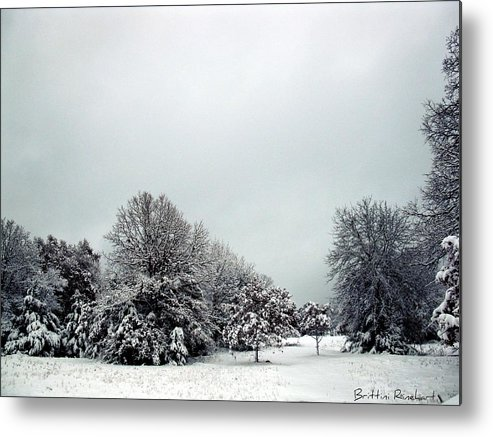 Snow Metal Print featuring the photograph January Snow V by Brittini Rinehart