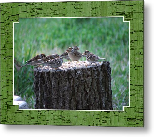 Wren's Metal Print featuring the photograph Lunch Time At The Tree Log Diner by Judy Waller