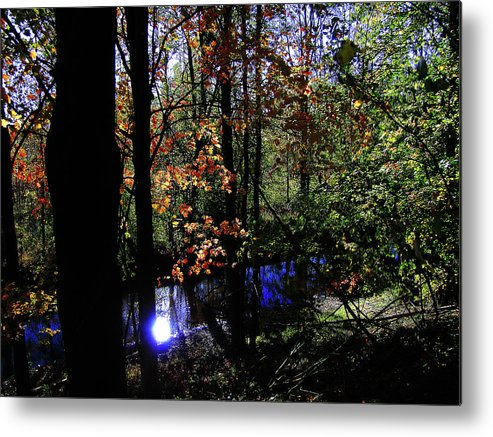 Hovind Metal Print featuring the photograph Michigan Fall Colors 1 by Scott Hovind