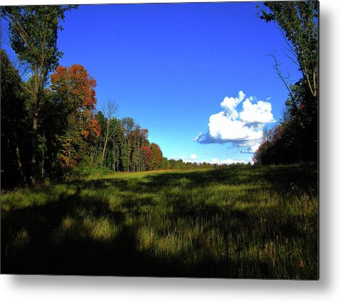 Hovind Metal Print featuring the photograph Michigan Fall Colors 12 by Scott Hovind