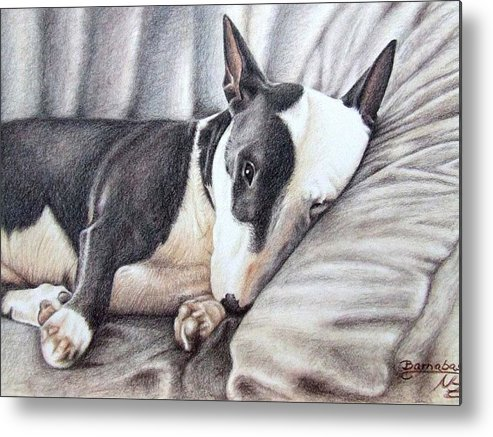 Dog Metal Print featuring the drawing Mini Bulldog Terrier by Nicole Zeug