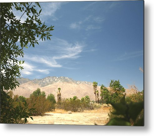 Desert Metal Print featuring the photograph Mojave by Chuck Shafer