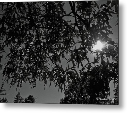Moon Metal Print featuring the photograph Moonlight by Betty Northcutt
