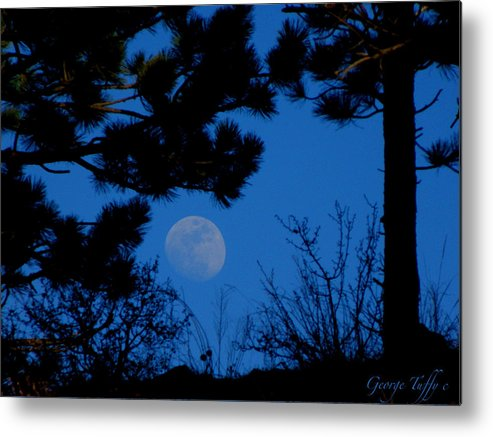 Moon Nature Forest Mountains Boulder Colorado Zen Simple Metal Print featuring the photograph Moonrise by George Tuffy