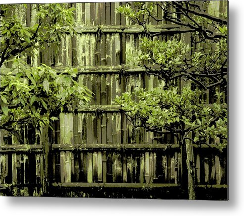Moss Metal Print featuring the photograph Mossy Bamboo Fence - Digital Art by Carol Groenen