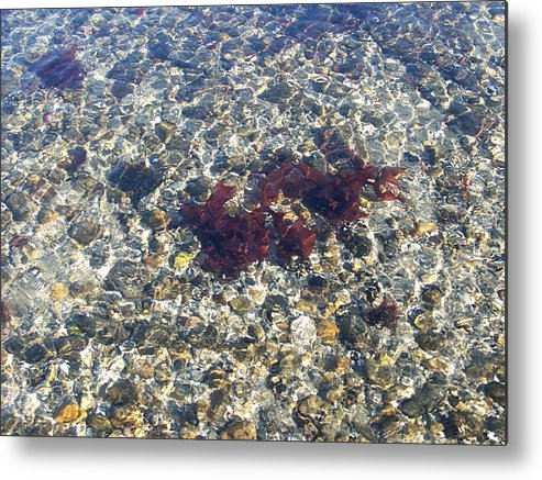 Water Metal Print featuring the photograph Narraganset Bay 3 by Erin Rosenblum