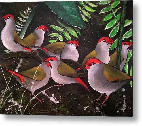 Red Browed Finch Metal Print featuring the painting Red-browed Finch Flock Weipa by Una Miller